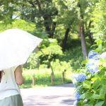 日傘の効果的な色と形は?UVカットの寿命は何年かを調査